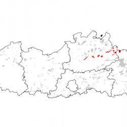 Kaart van de speciale beschermingszones voor: Groenknolorchis