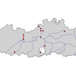 Verspreidingskaart Slechtvalk. Kaart afkomstig van de atlas van de Vlaamse broedvogels van 2000 - 2002.