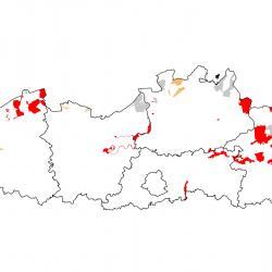 Speciale beschermingszones voor Roerdomp
