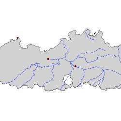 Verspreidingskaart Ooievaar. Kaart afkomstig van de atlas van de Vlaamse broedvogels van 2000 - 2002.