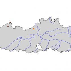 Verspreidingskaart Lepelaar. Kaart afkomstig van de atlas van de Vlaamse broedvogels van 2000 - 2002.