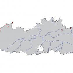 Verspreidingskaart Kleine mantelmeeuw. Kaart afkomstig van de atlas van de Vlaamse broedvogels van 2000 - 2002.