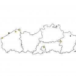Verspreidingskaart (2007), Tweekleurige vleermuis