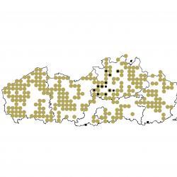 Verspreidingskaart (2007), Laatvlieger