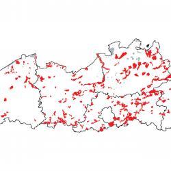 Kaart van de speciale beschermingszones voor: Alluviale bossen met Alnus glutinosa en Fraxinus excelsior (Alno-Padion, Alnion incanae, Salicion albae)