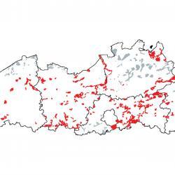 Kaart van de speciale beschermingszones voor: Sub-Atlantische en Midden-Europese Wintereikenbossen of Eiken-Haagbeukenbossen behorend tot het Carpinion betuli