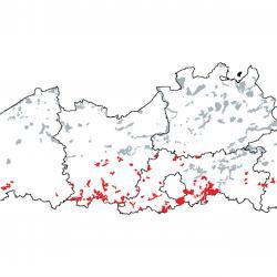 Kaart van de speciale beschermingszones voor: Beukenbossen van het type Asperulo-Fagetum