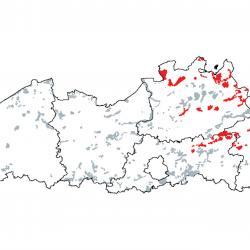 Kaart van de speciale beschermingszones voor: Slenken in veengronden met vegetatie behorend tot het Rhynchosporion