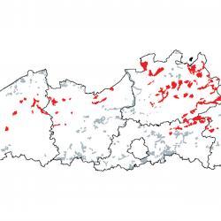 Kaart van de speciale beschermingszones voor: Oligotrofe tot mesotrofe stilstaande wateren met vegetatie behorend tot het Littorelletalia uniflorae en/of Isoëto-Nanojuncetea