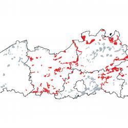 Kaart van de speciale beschermingszones voor: Psammofiele heide met Calluna en Genista