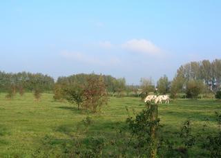 Jekervallei (2)
