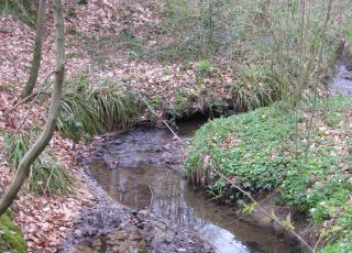 Sassegembeek