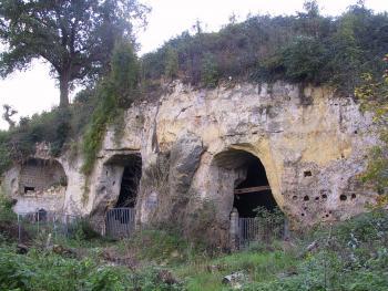 Ingang van een oude mergelgroeve onder de Tiendeberg te Kanne (Riemst).